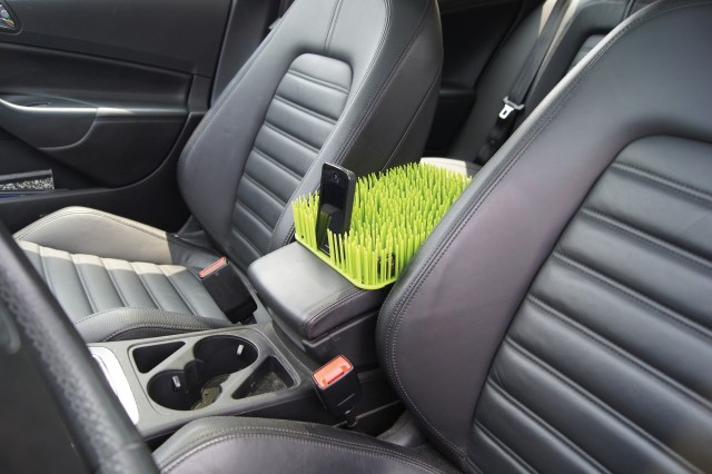 "This innovative ""grass"" keeps fido off the console"