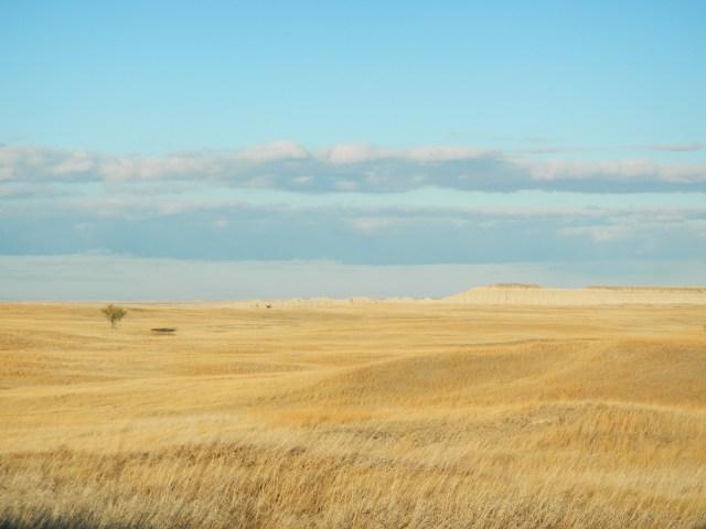 Badlands Grasslands