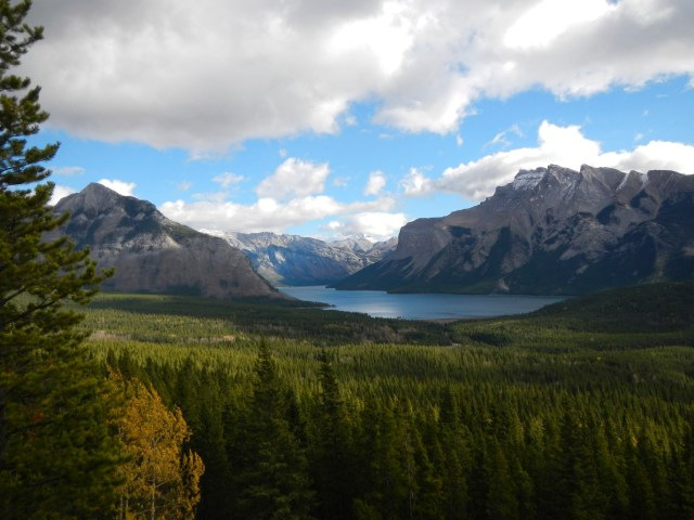 The green beauty of Banff