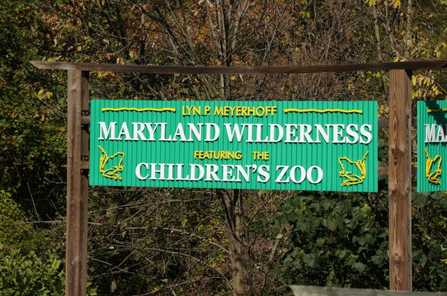 Maryland National Zoo 7