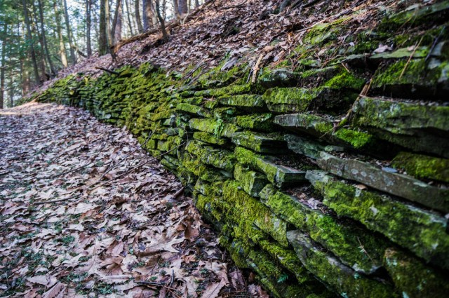 Mossy wall at Watkins Glen State Park