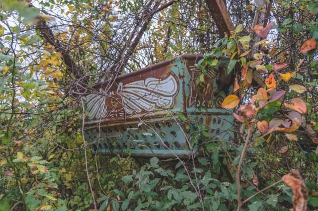 Abandoned Ferris Wheel Seat