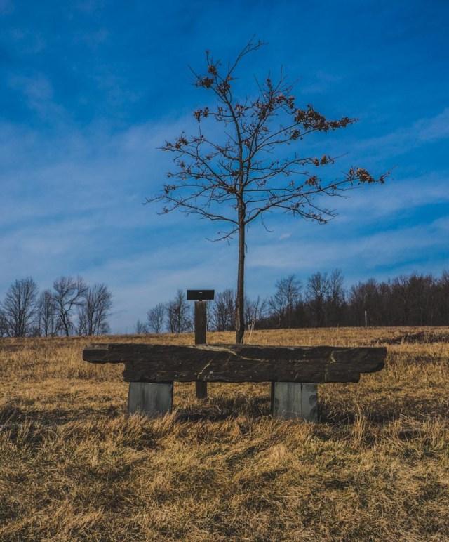Tanglewood Preserve