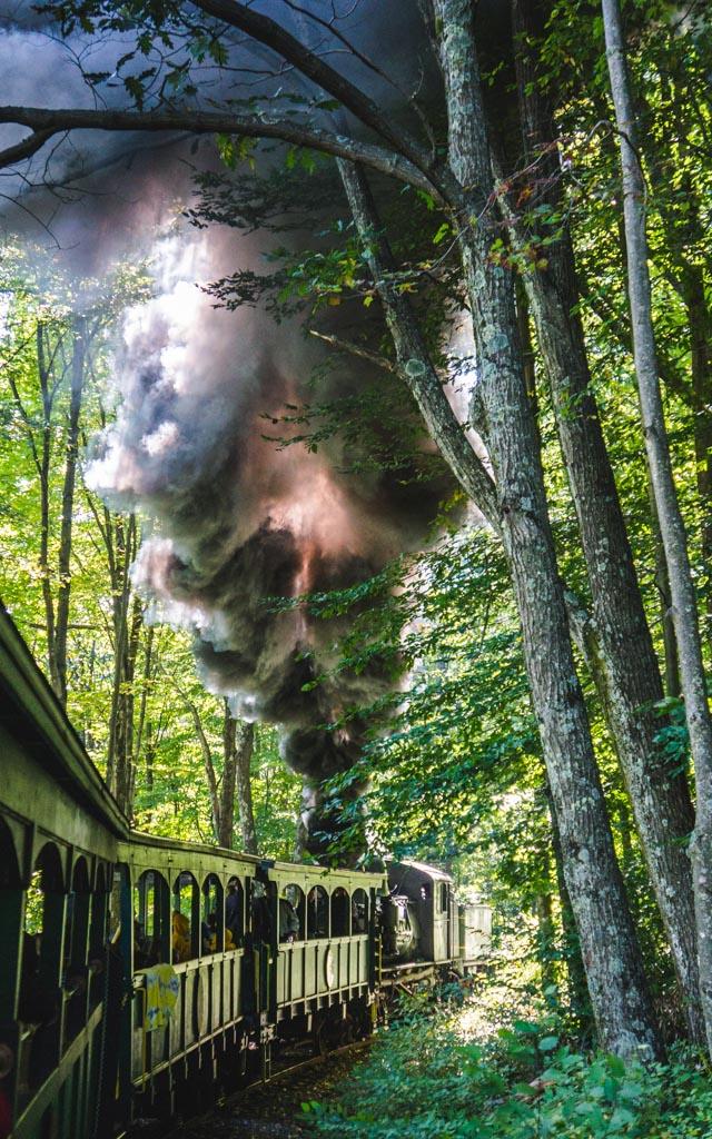 Cass Scenic Railroad 20