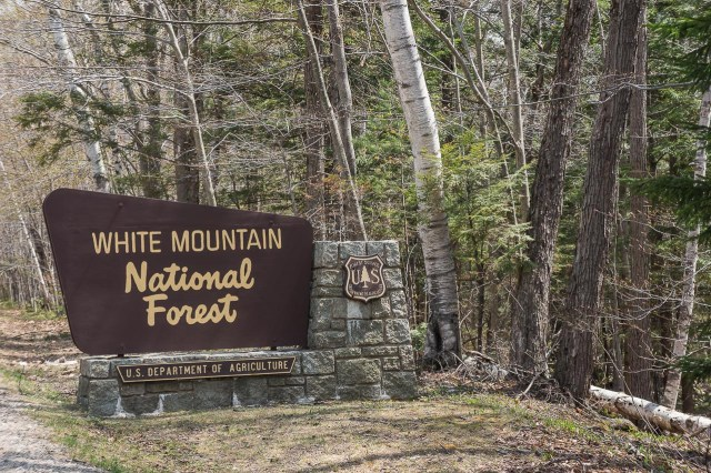 Welcome to the White Mountains!