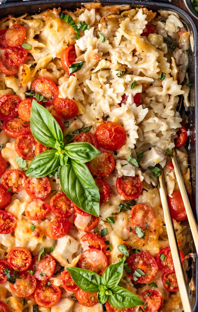 Chicken Alfredo Pasta Bake topped with tomatoes