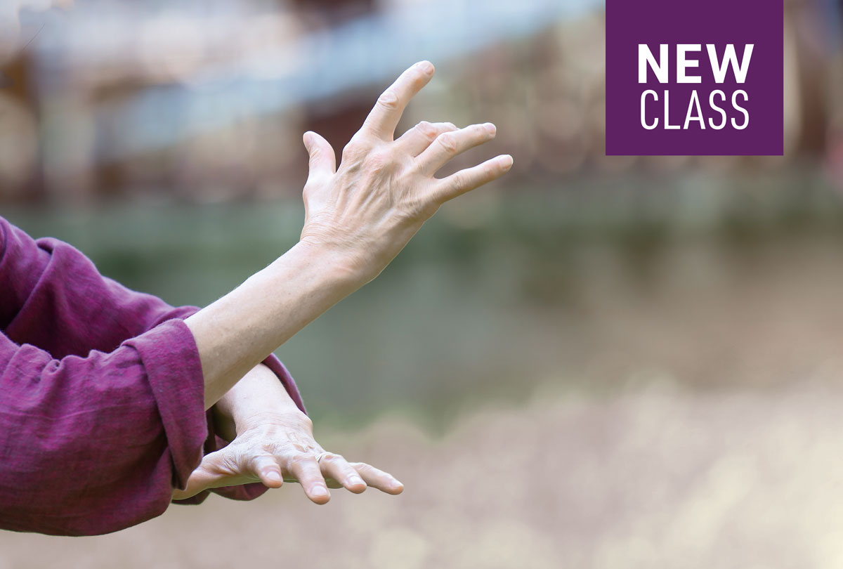 T'ai Chi for beginners in Northampton