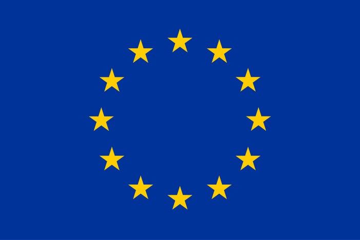 Cork MEP chosen as a representative for the Conference on the Future of Europe