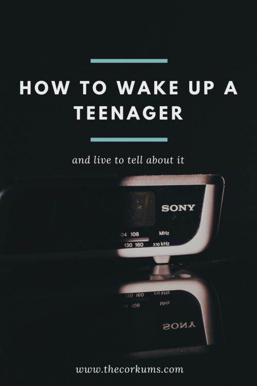 parenting, teenagers, teens, homeschooling