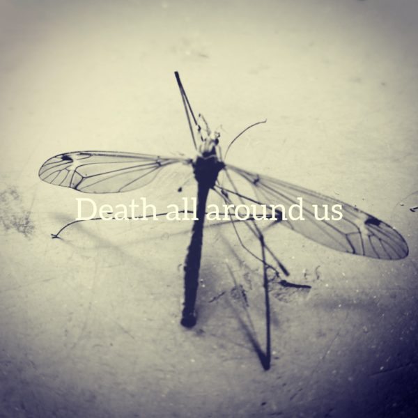 Death all around us