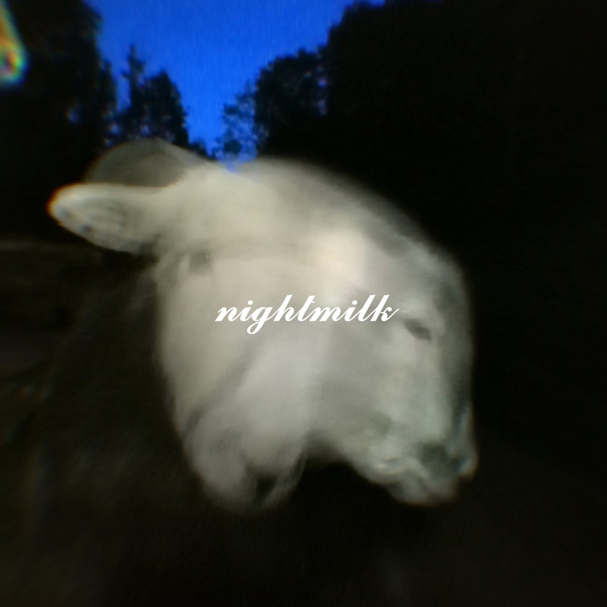 nightmilk