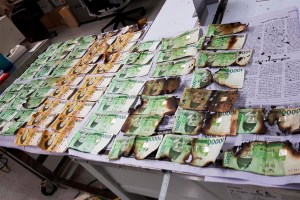 Knucklehead who thinks washing cash will kill COVID-19 wrecks at least $19K