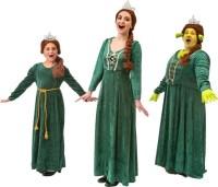 Shrek Costume Rentals