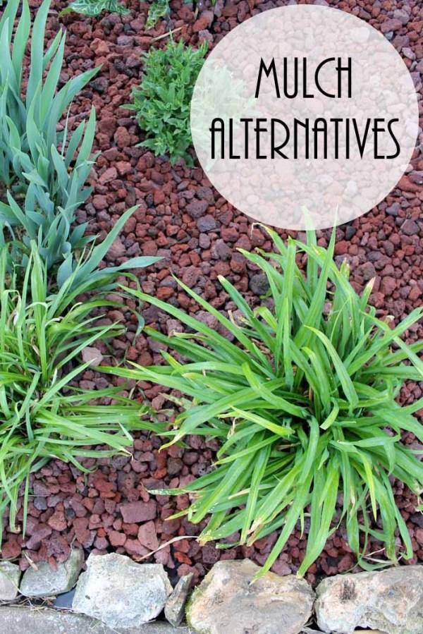 mulch alternatives adding curb