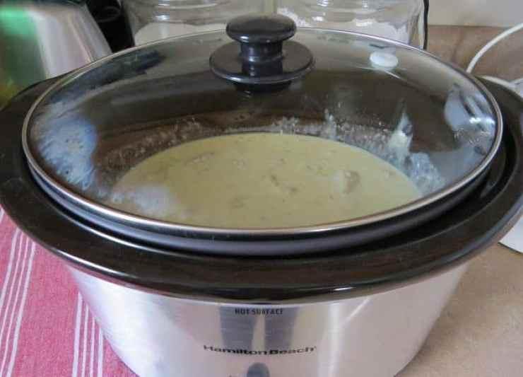 covered 6 quart slow cooker