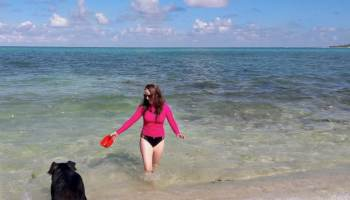 Getting Bit by a Pig in The Bahamas | The Country Jumper