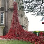 Poignant poppy display brings 30,000 to Perth