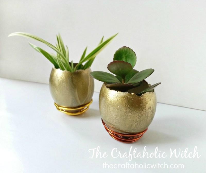 planter (2)