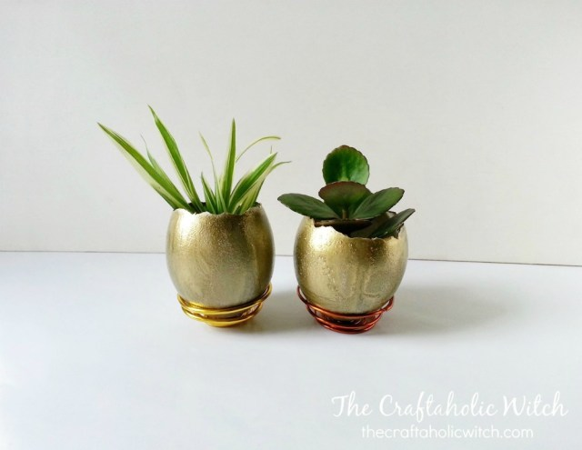 planter (5)