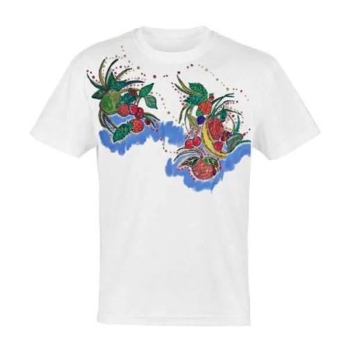 Fruit Adult T Shirt