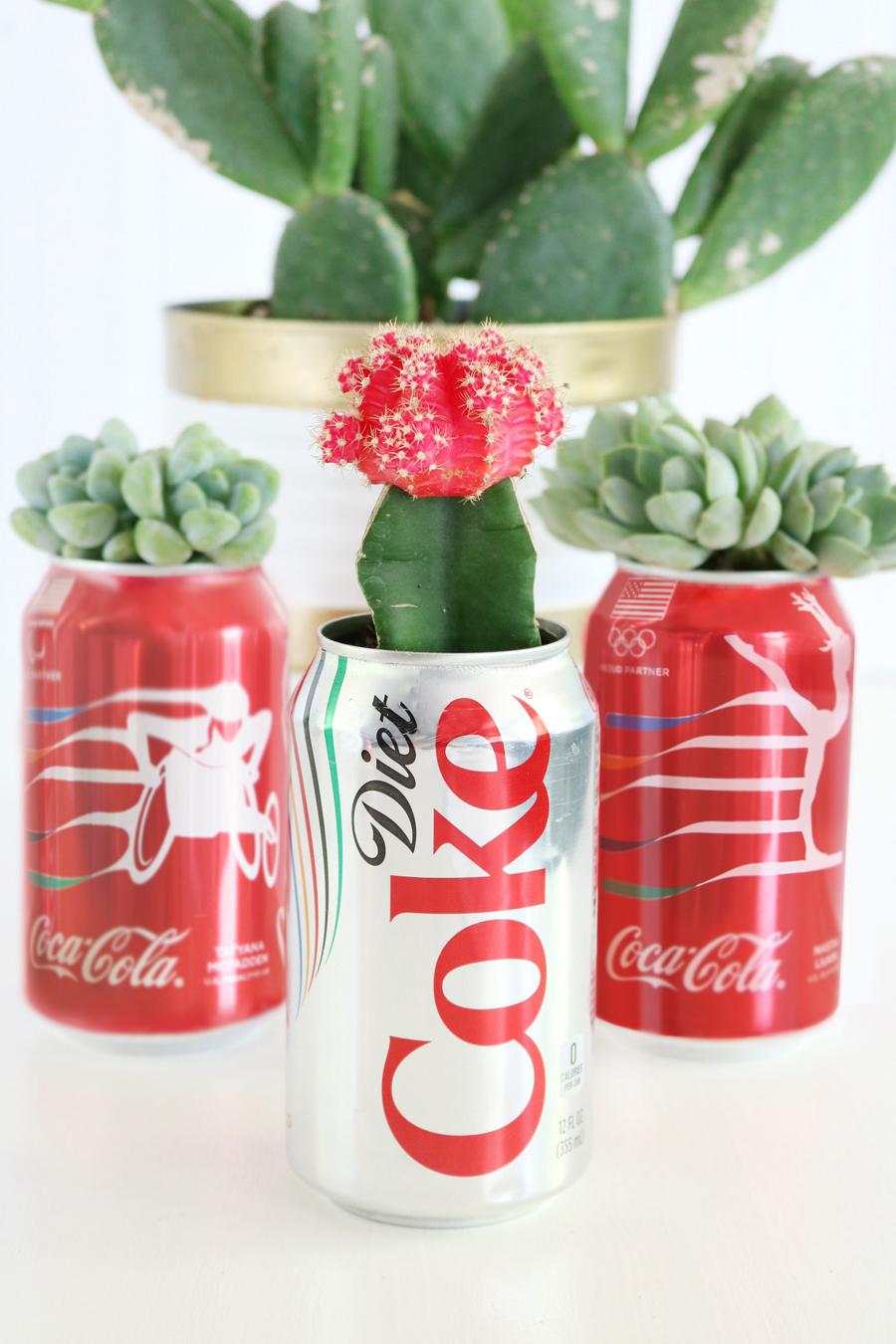 DIY Coca Cola Succulent Gift Idea