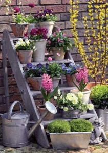 Spring ladder