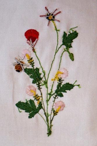 Poppies and Santa Barbara Daisies (Celeste Chalasani) stumpwork embroidery