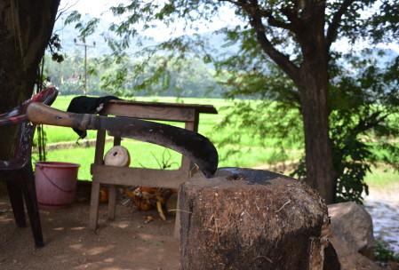 Sri Lanka Machete