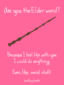 The Elder Wand!
