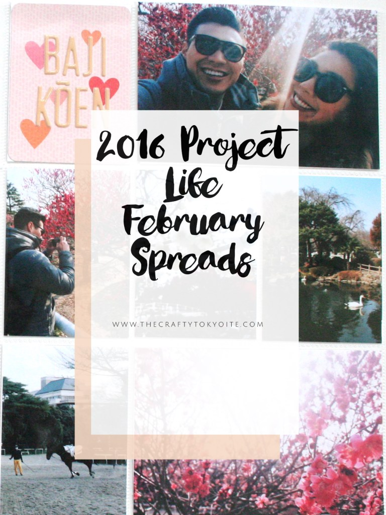 2016-project-life-february-spreads-pinterest