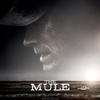 The law may be an ass, but The Mule (2019) is a real donkey.