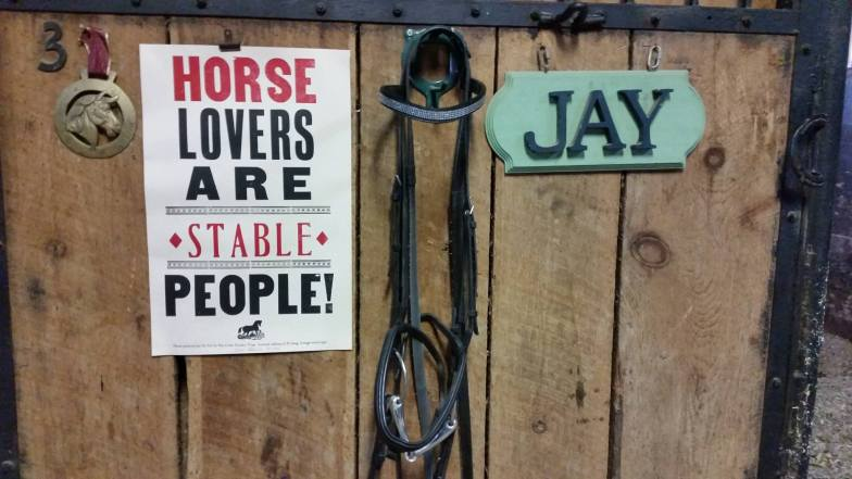 Horse lovers broadside