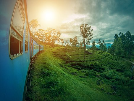 Scenic Train Journey from Colombo to Kandy.