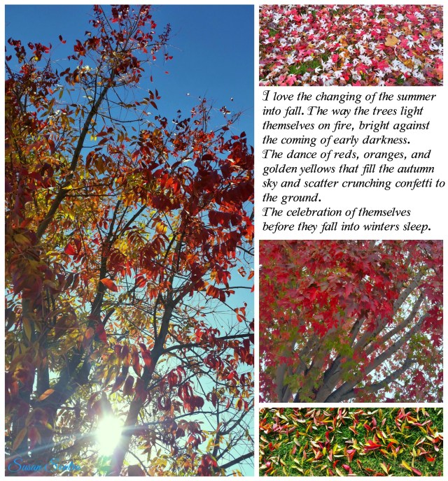 fall-collage-story-marked