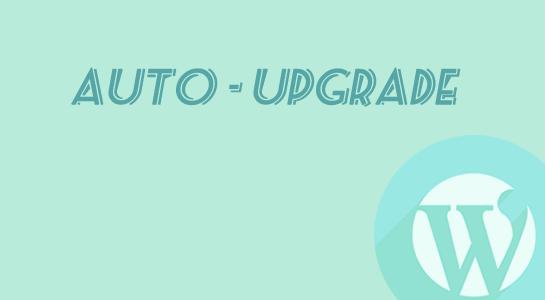 To Configure Auto Updates in Wordpress