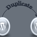 php duplicate title