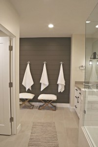 Painted Shiplap Accent Walls in Rich Colors