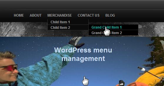 Thesis custom navigation menu