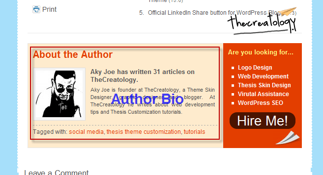 Add Author Bio below single post in Thesis WordPress Theme