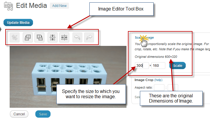 How to crop image and resize image using WordPress Image