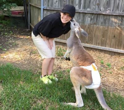 Jaxx the Kangaroo (special programs only)