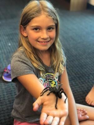 Charlotte - tarantula