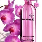 Roses Elixir by Montale