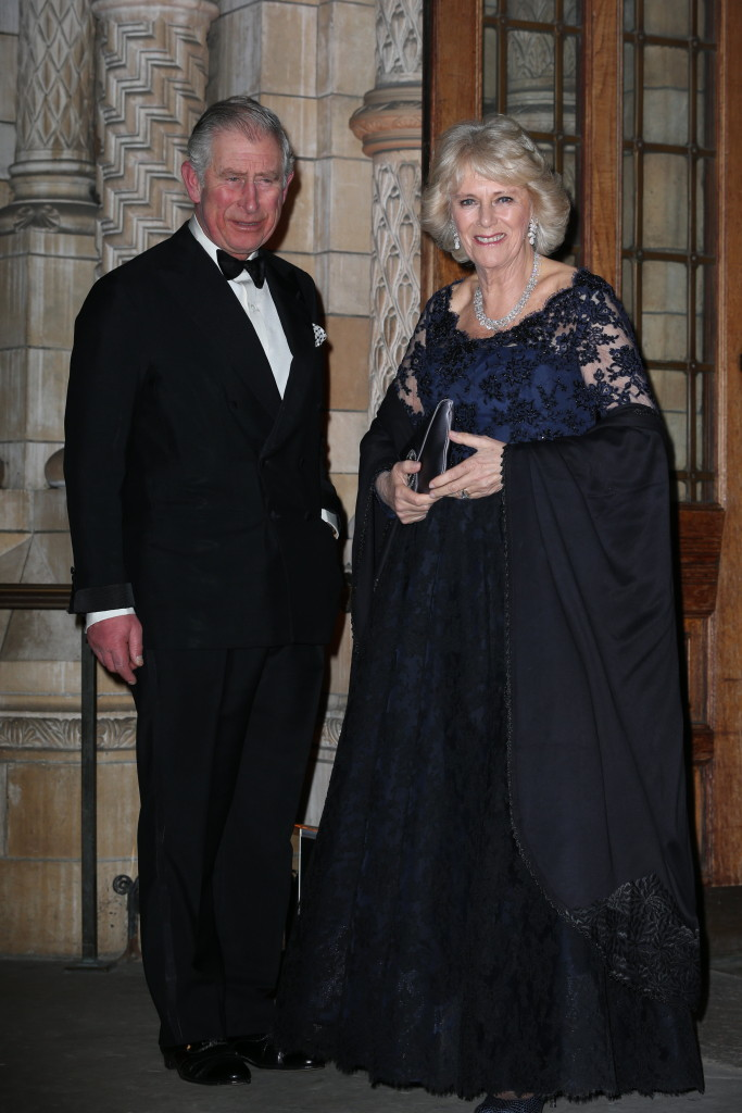 Camilla has supported her husband, The Prince of Wales, on hundreds of engagements an visits abroad. Picture by Stephen Lock / i-Images