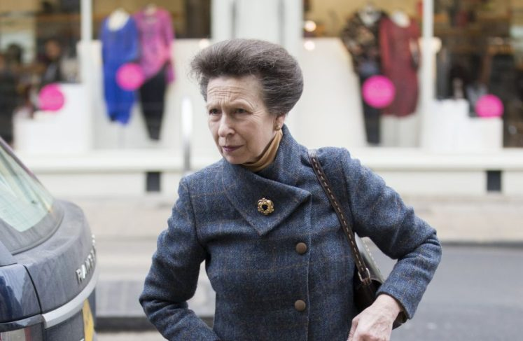 Princess Anne has been to hospital for a chest infection; she has cancelled engagements (i-Images)