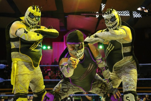AAA in Monterrey, CMLL weekend results, Puebla family tag