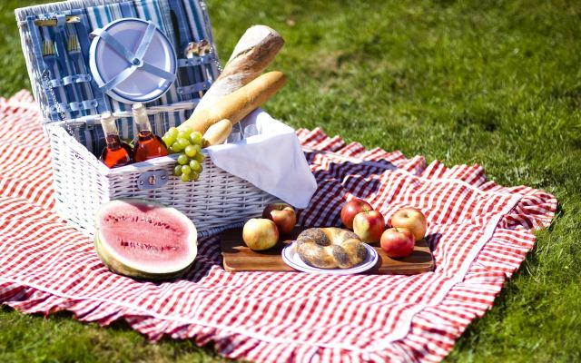 Perfect Picnic Ideas for Summer