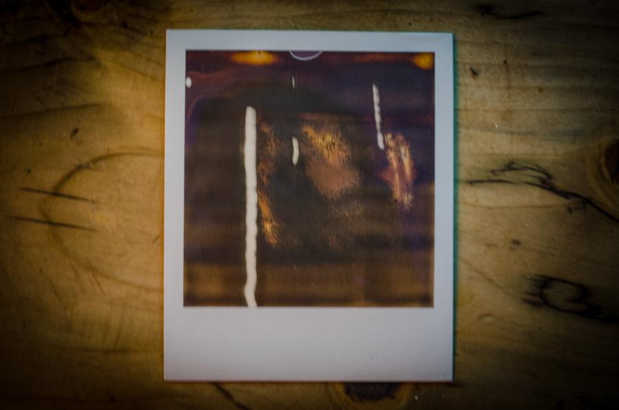 the bacon polaroids-0019