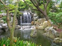 A Chinese Garden - The Rhythm of Nature Refreshing the ...