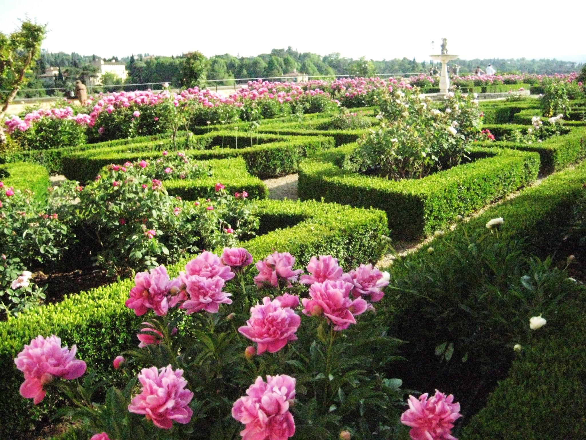 Rose Garden Boboli Gardens Florence Italy The Culture Map